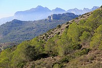 Mountain peaks landscape from Coll de Rates, Tàrbena, Marina Alta, Alicante province, Spain looking west
