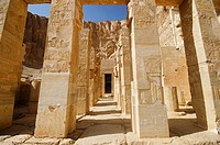 Carved pillars, Situated at third floor of the Mortuary Temple of Hatshepsut, Is an ancient funerary shrine, Dedicated to the sun god Amon, Located on...