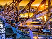 France, Paca-Cote d´Azur, sunrise on the fishing harbour at Bandol.
