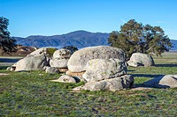Rock formations and trees in a meadow. San Diego County, California, USA.