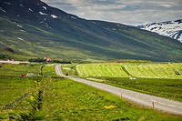 Summertime Route One or The Ring Road, Eyjafjordur, Northern Iceland.