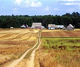 Poland. Suwalski region. Blue cottage