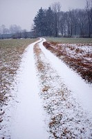 path in the woods and the fields, snow