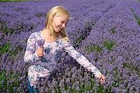 Blond girl, ten years old, in a lavender field in Ystad, Sweden.